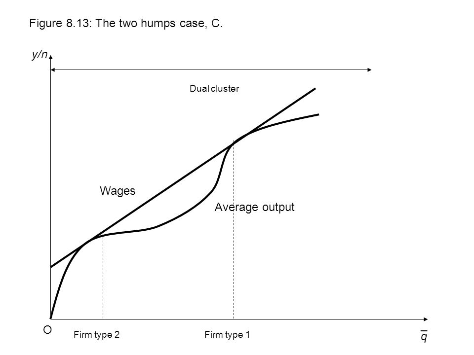 q y/n Figure 8.13: The two humps case, C. O ¯ Wages Dual cluster Average output Firm type 1Firm type 2