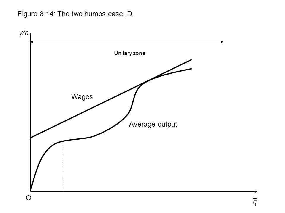 q y/n Figure 8.14: The two humps case, D. O ¯ Wages Unitary zone Average output