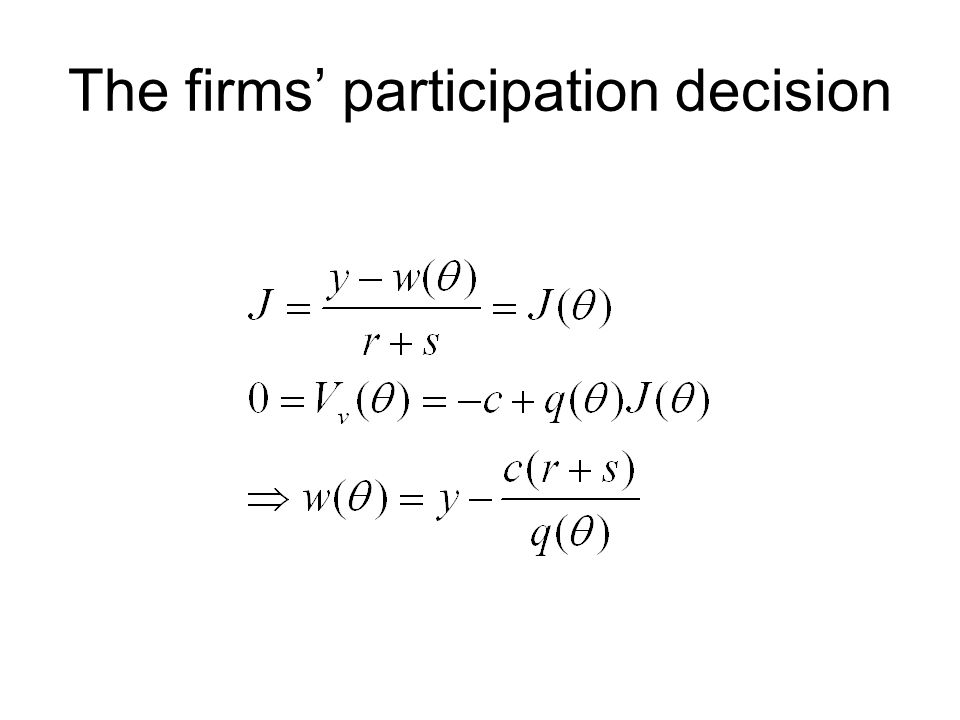 The firms' participation decision