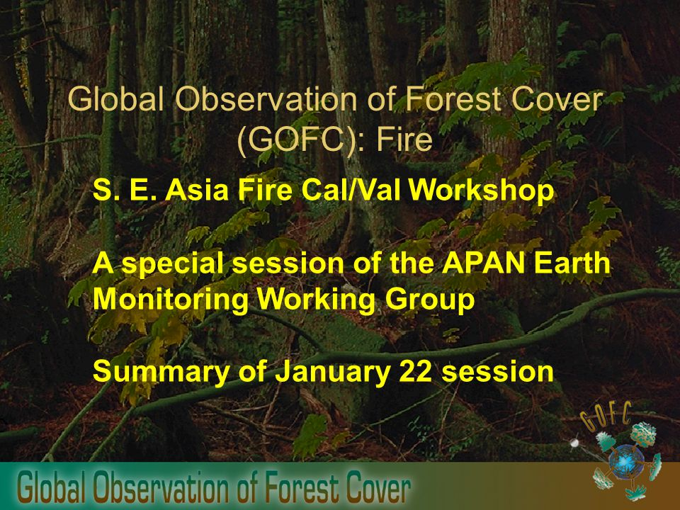 Global Observation of Forest Cover (GOFC): Fire S.