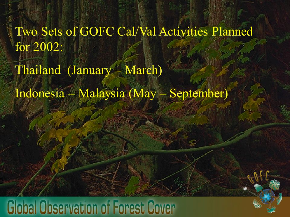 Two Sets of GOFC Cal/Val Activities Planned for 2002: Thailand (January – March) Indonesia – Malaysia (May – September)