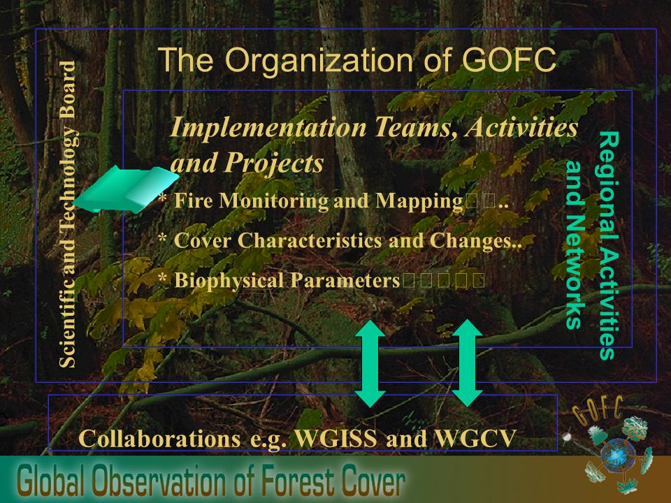 The Organization of GOFC Scientific and Technology Board Implementation Teams, Activities and Projects * Fire Monitoring and Mapping ..