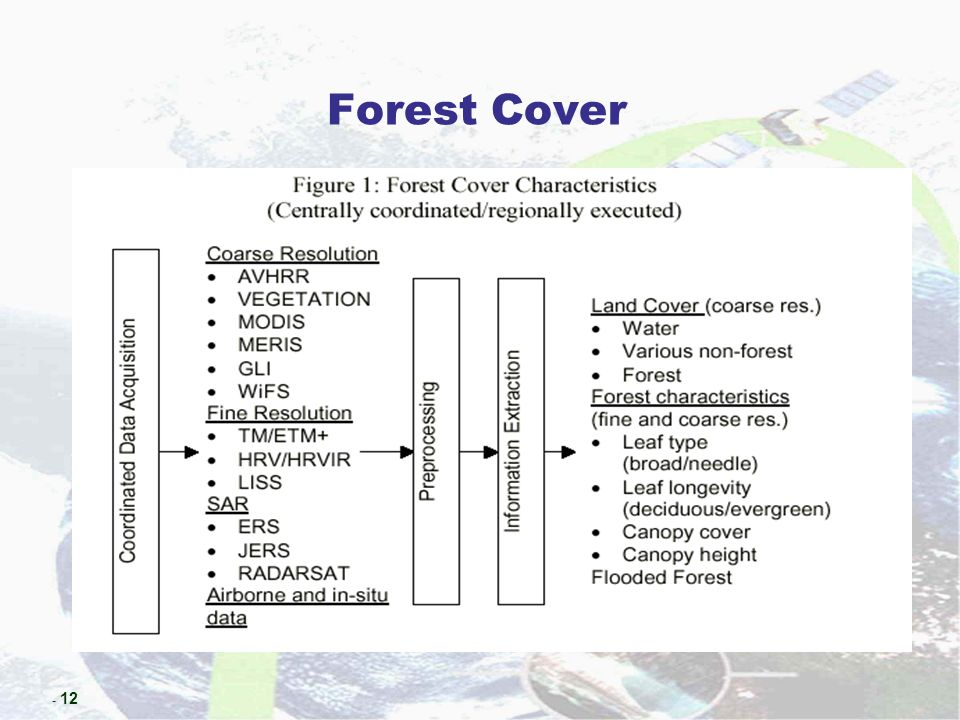 - 12 Forest Cover