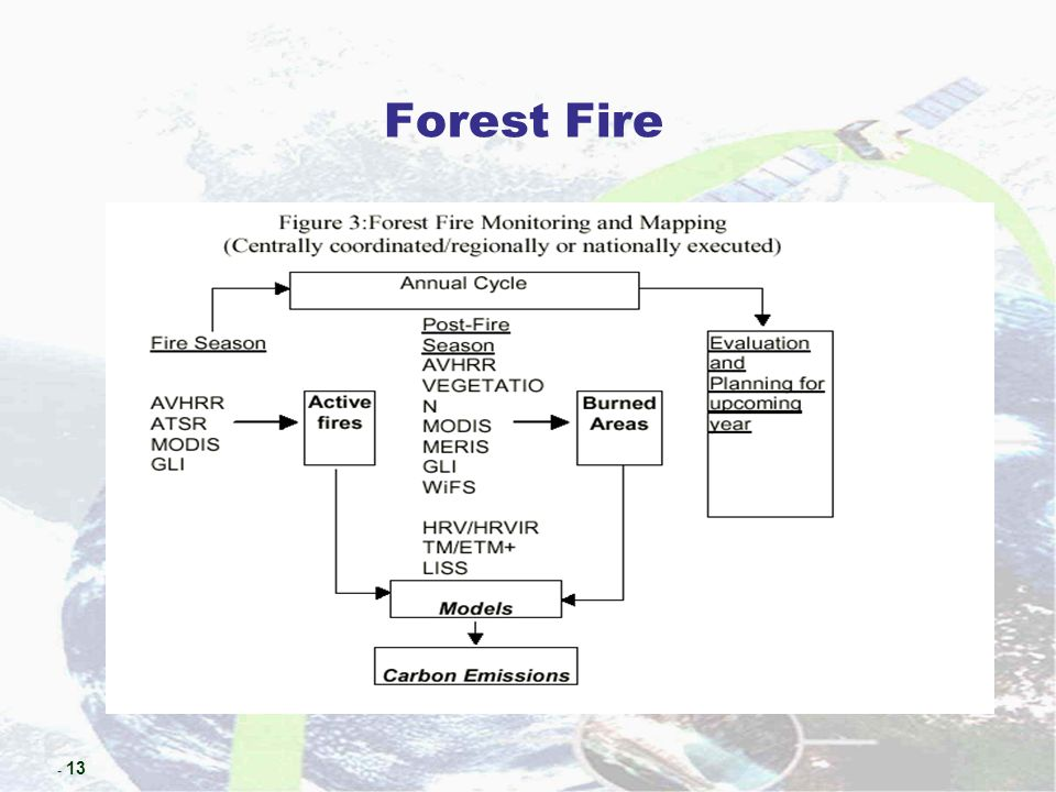 - 13 Forest Fire