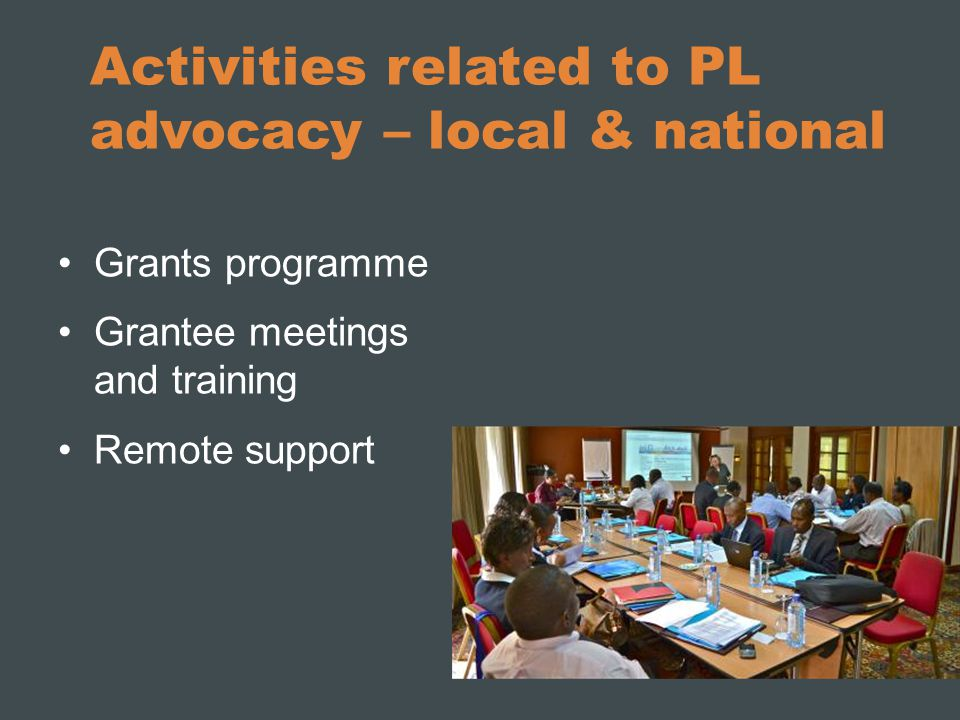 Activities related to PL advocacy – local & national Grants programme Grantee meetings and training Remote support