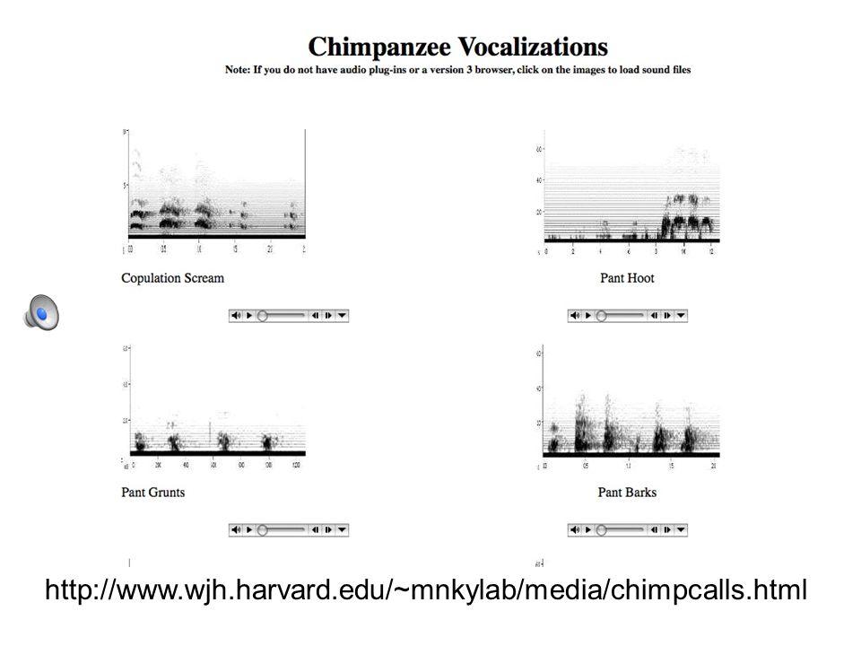 http://www.wjh.harvard.edu/~mnkylab/media/chimpcalls.html