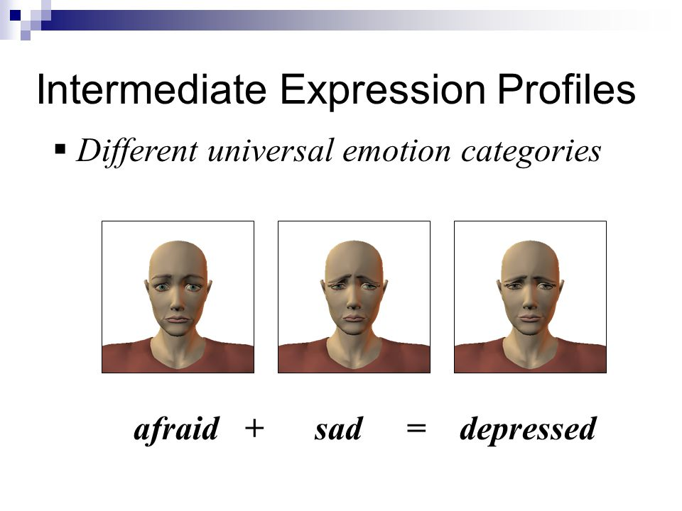 Intermediate Expression Profiles  Different universal emotion categories afraid + sad= depressed