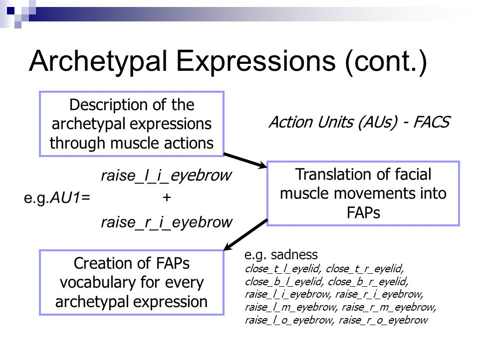 Archetypal Expressions (cont.) Description of the archetypal expressions through muscle actions Translation of facial muscle movements into FAPs Creat