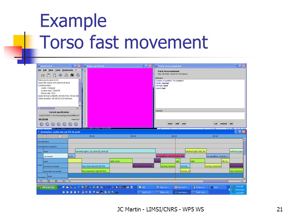 JC Martin - LIMSI/CNRS - WP5 WS21 Example Torso fast movement
