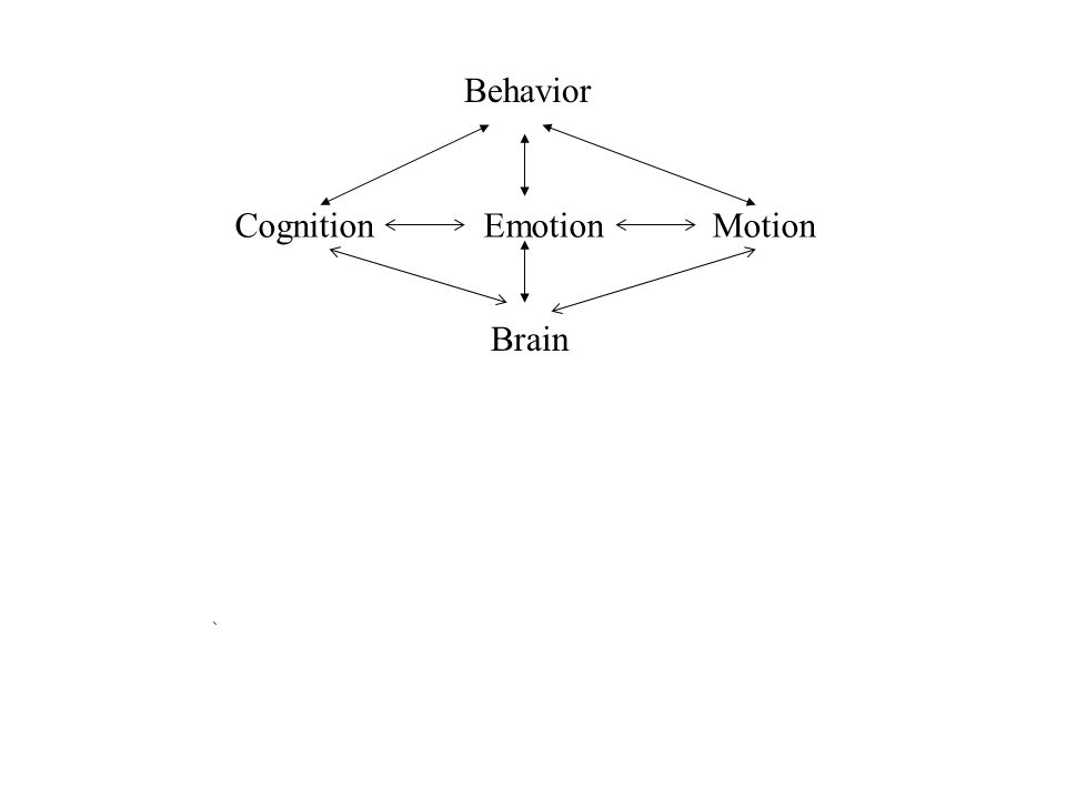 Cognition Emotion Motion Brain Behavior