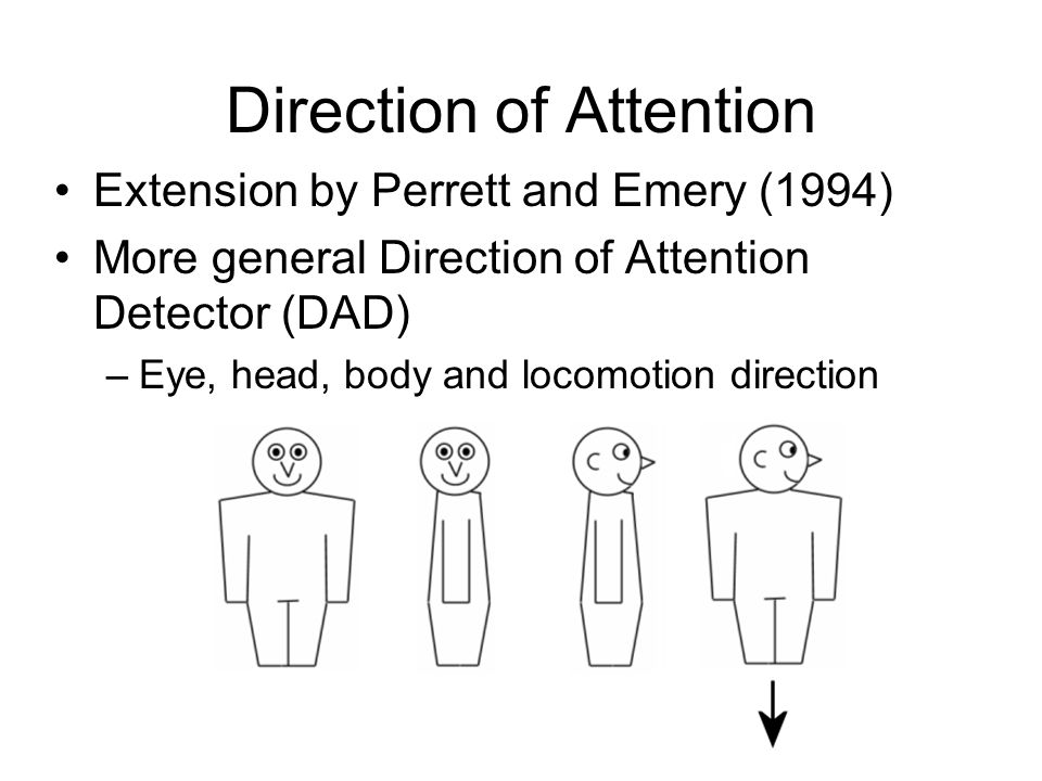 Direction of Attention Extension by Perrett and Emery (1994) More general Direction of Attention Detector (DAD) –Eye, head, body and locomotion direction