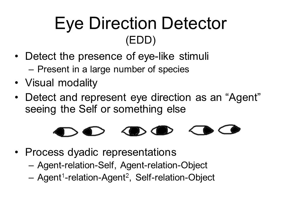 Detect the presence of eye-like stimuli –Present in a large number of species Visual modality Detect and represent eye direction as an Agent seeing the Self or something else Process dyadic representations –Agent-relation-Self, Agent-relation-Object –Agent 1 -relation-Agent 2, Self-relation-Object Eye Direction Detector (EDD)