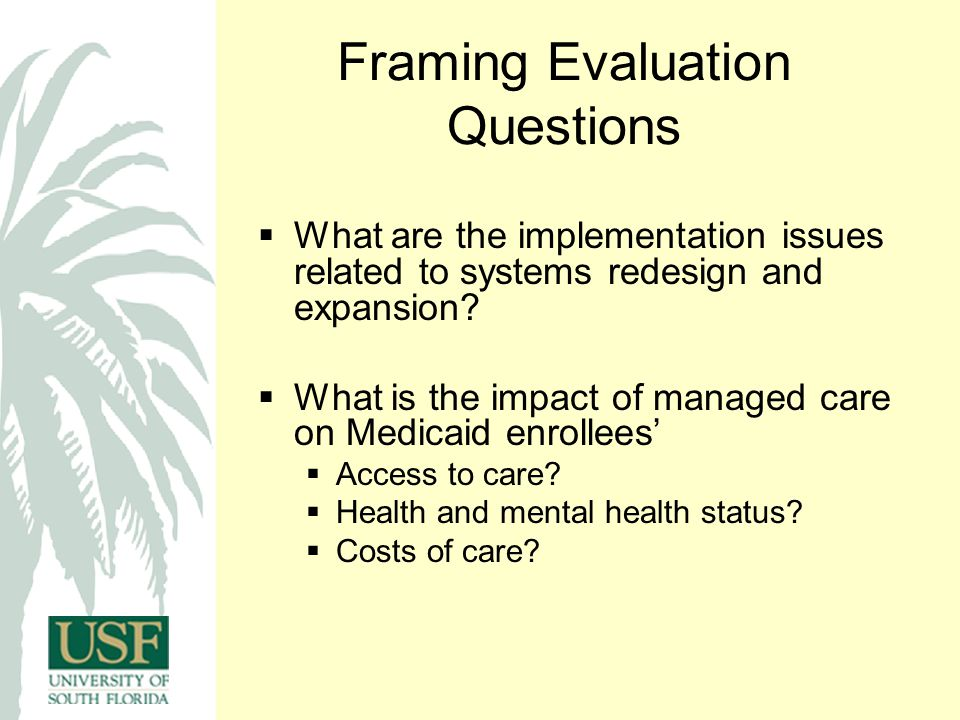 Framing Evaluation Questions  What are the implementation issues related to systems redesign and expansion.