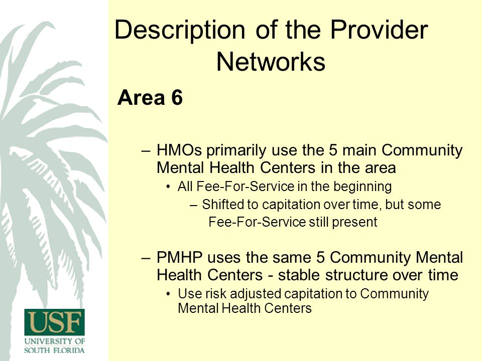 Description of the Provider Networks Area 6 –HMOs primarily use the 5 main Community Mental Health Centers in the area All Fee-For-Service in the beginning –Shifted to capitation over time, but some Fee-For-Service still present –PMHP uses the same 5 Community Mental Health Centers - stable structure over time Use risk adjusted capitation to Community Mental Health Centers