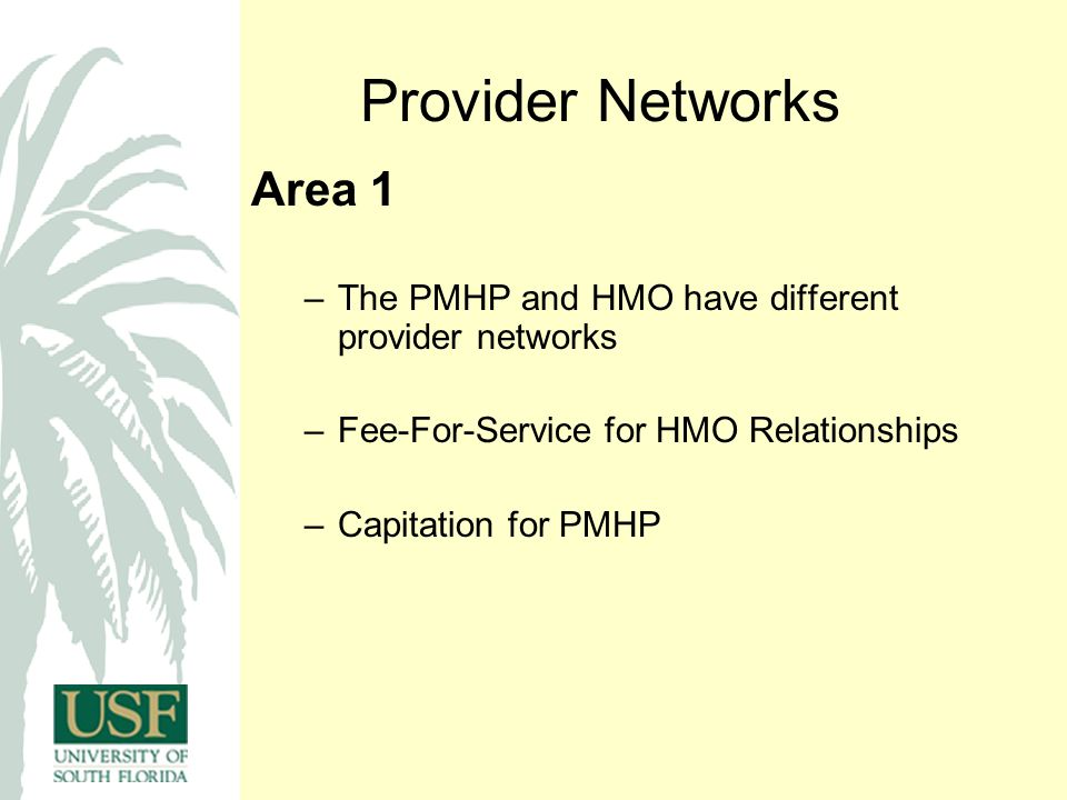 Provider Networks Area 1 –The PMHP and HMO have different provider networks –Fee-For-Service for HMO Relationships –Capitation for PMHP