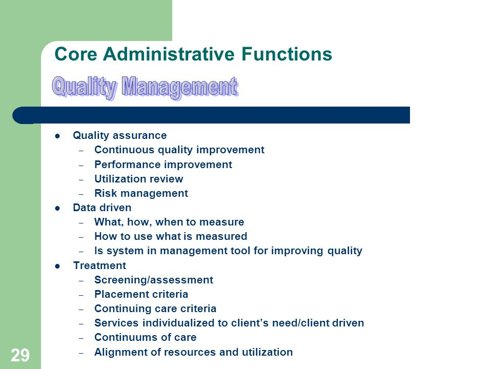 28 Core Administrative Functions Quality Improvement Committee – Comprised of QI personnel from all providers Performance improvement reviews – Case file review – Medical record review – Customer survey – Data/outcomes review – Service validation review Performance measures – State mandated outcomes – High risk – High volume – Problem prone