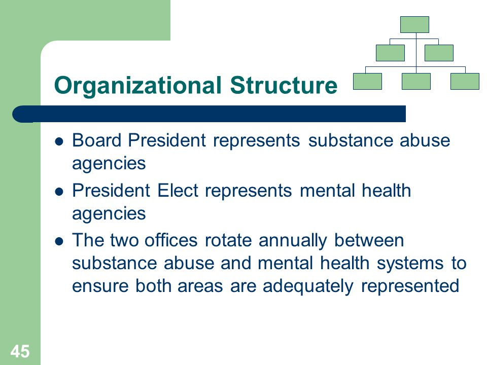 44 Organizational Structure In May, 2002 Bylaws revised to reflect significant changes in the organizational leadership and Board structure Changes implemented to meet the Network's need for the Board to be more representative of the expanded geographic area