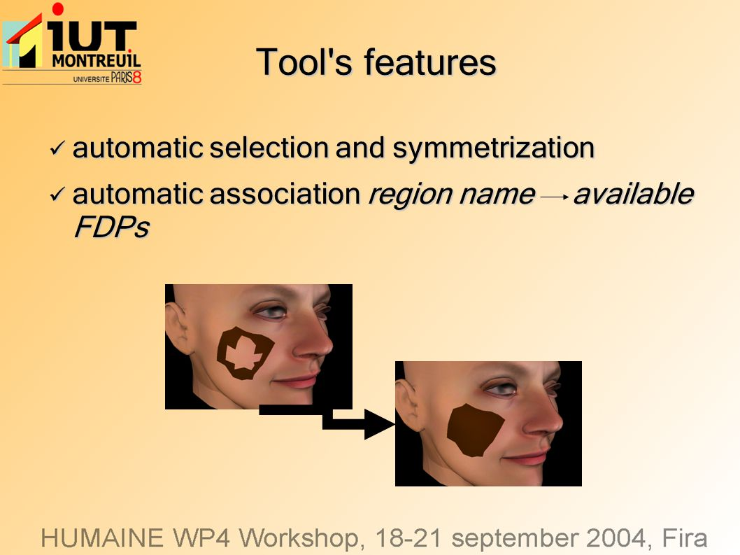 Tool's features automatic selection and symmetrization automatic selection and symmetrization automatic association region name available FDPs automat