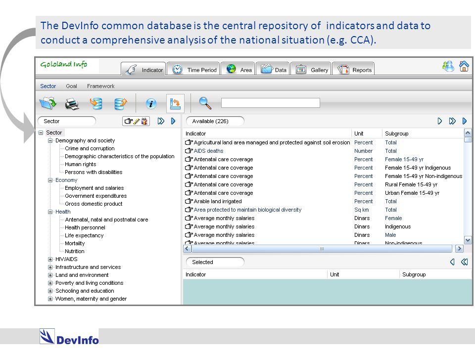 The DevInfo common database is the central repository of indicators and data to conduct a comprehensive analysis of the national situation (e.g.