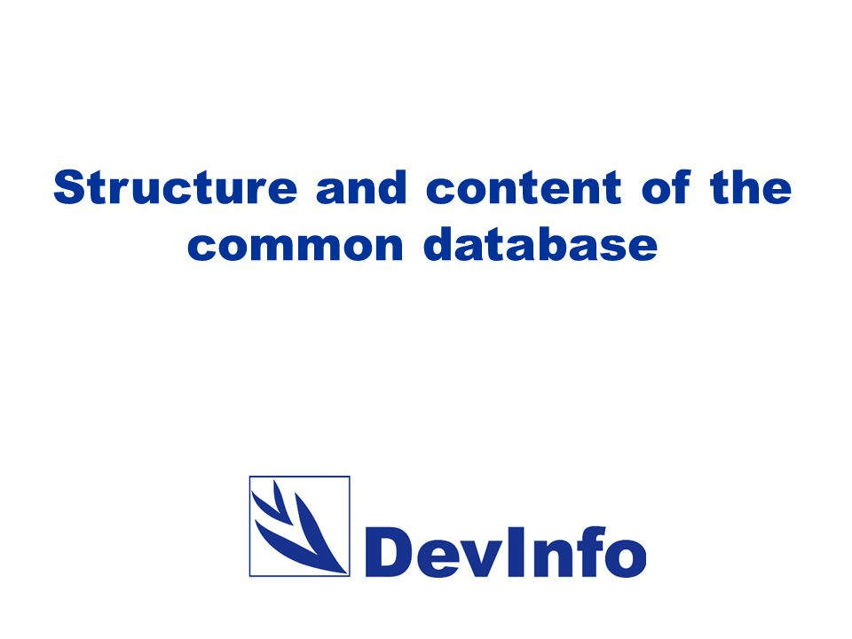 The DevInfo common database is used to produce standard periodic reports, such as MDG reports