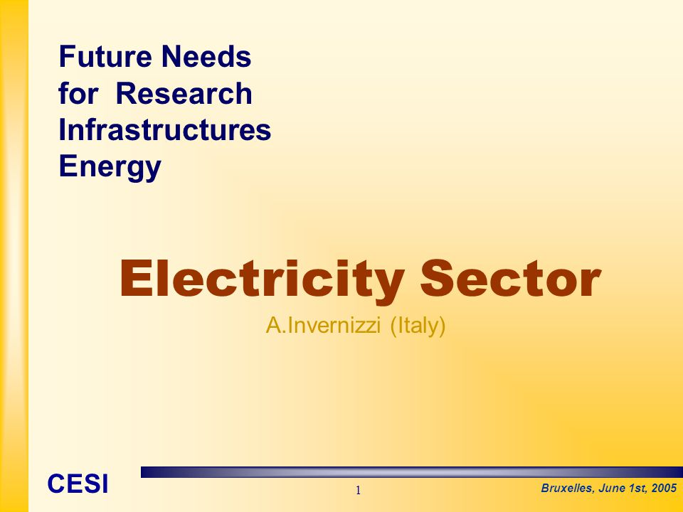 Bruxelles, June 1st, 2005 CESI 1 Electricity Sector A.Invernizzi (Italy) Future Needs for Research Infrastructures Energy