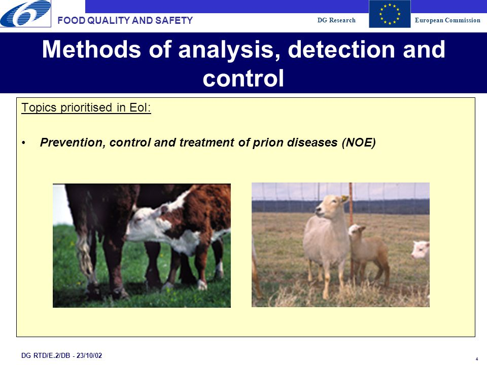 DG ResearchEuropean Commission 4 DG RTD/E.2/DB - 23/10/02 Methods of analysis, detection and control Topics prioritised in EoI: Prevention, control and treatment of prion diseases (NOE) FOOD QUALITY AND SAFETY