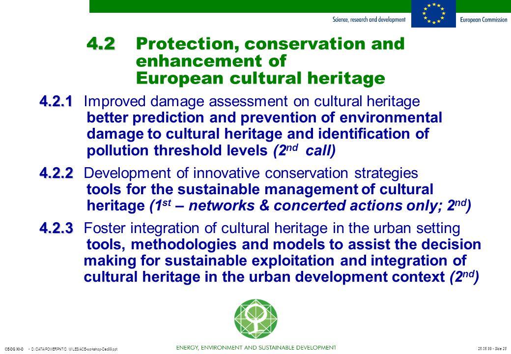 25.06.99 - Slide 25 CE-DG XII-D D:/DATA/POWERPNT/D. MILES/ACE-workshop-Dec99.ppt 4.2 4.2Protection, conservation and enhancement of European cultural