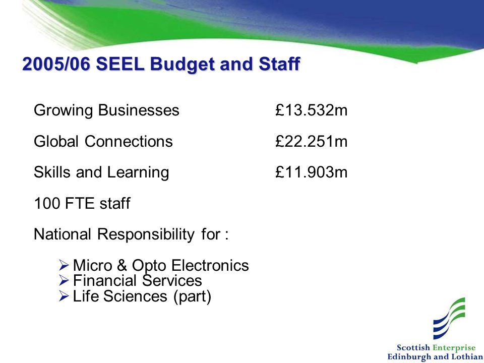 2005/06 SEEL Budget and Staff Growing Businesses£13.532m Global Connections£22.251m Skills and Learning£11.903m 100 FTE staff National Responsibility for :  Micro & Opto Electronics  Financial Services  Life Sciences (part)