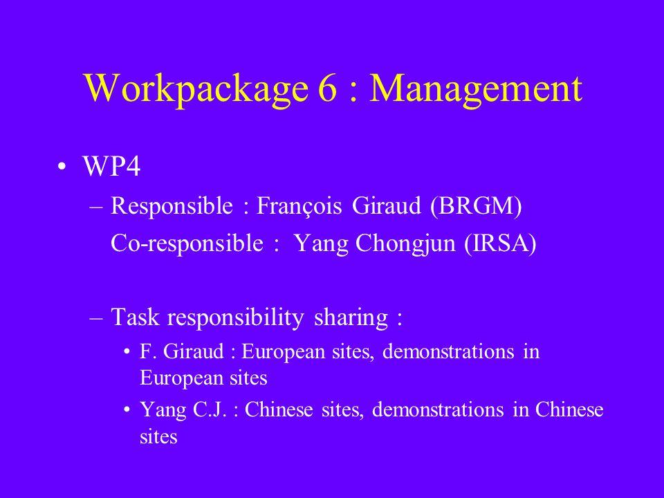 Workpackage 6 : Management WP4 –Responsible : François Giraud (BRGM) Co-responsible : Yang Chongjun (IRSA) –Task responsibility sharing : F.