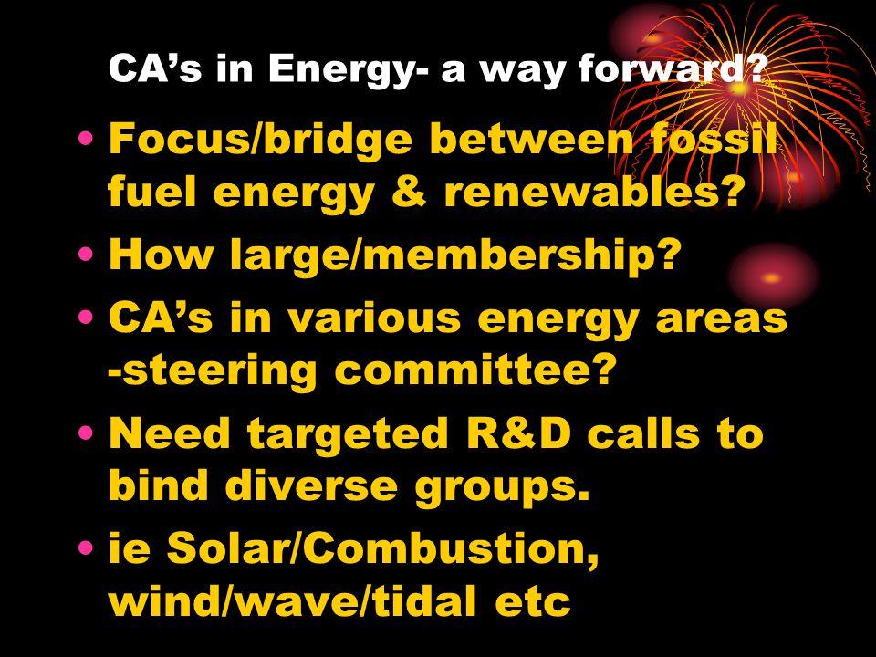 CA's in Energy- a way forward. Focus/bridge between fossil fuel energy & renewables.