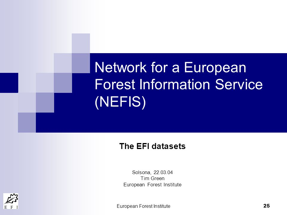 European Forest Institute 25 Network for a European Forest Information Service (NEFIS) The EFI datasets Solsona, 22.03.04 Tim Green European Forest Institute