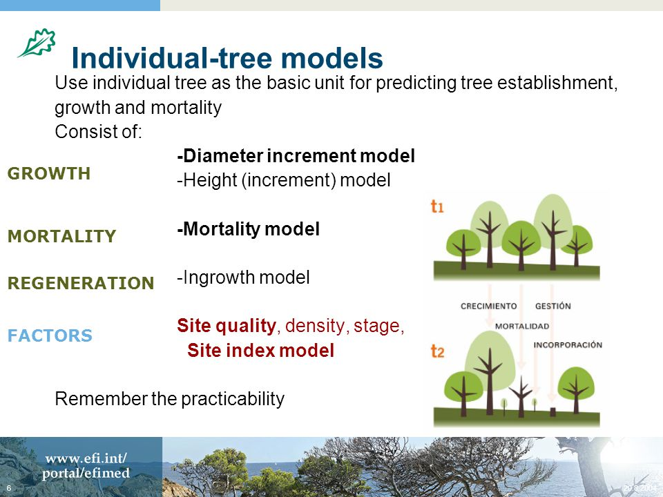 20.8.20046 Individual-tree models Use individual tree as the basic unit for predicting tree establishment, growth and mortality Consist of: -Diameter increment model -Height (increment) model -Mortality model -Ingrowth model Site quality, density, stage, Site index model Remember the practicability GROWTH MORTALITY REGENERATION FACTORS