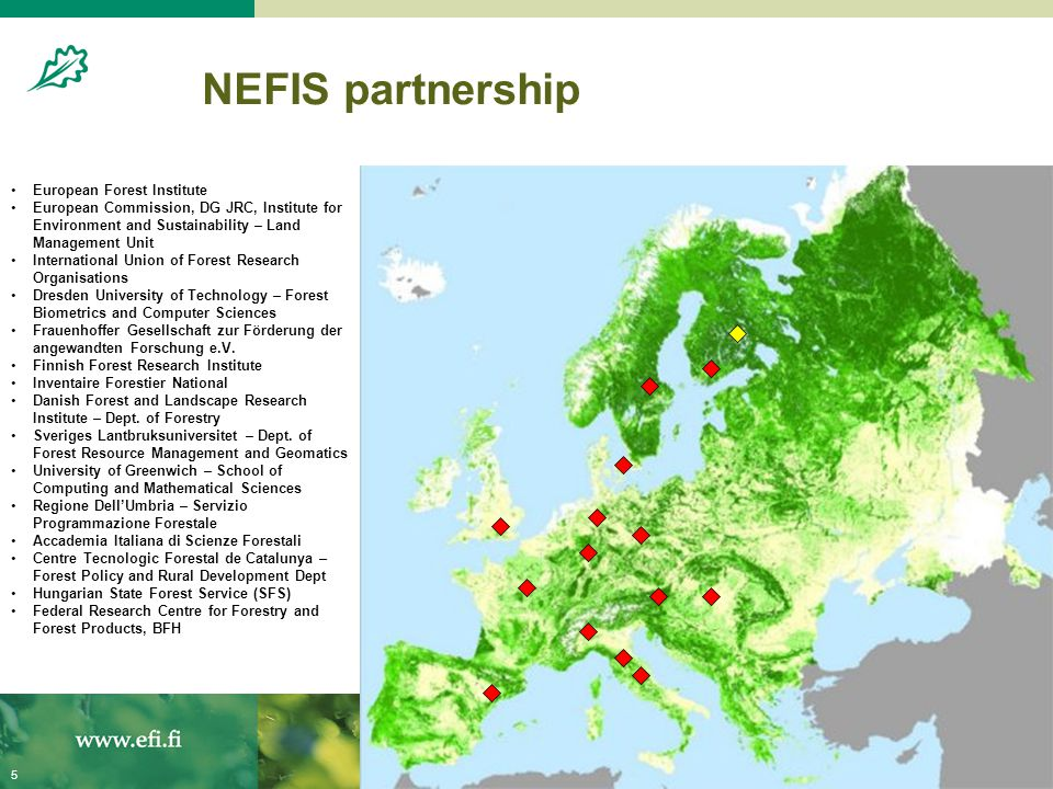 20.8.20045 NEFIS partnership European Forest Institute European Commission, DG JRC, Institute for Environment and Sustainability – Land Management Uni