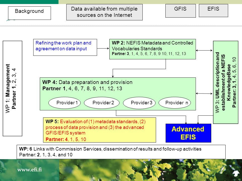 WP 1: Management Partner 1, 2, 3, 4 Data available from multiple sources on the Internet GFISEFIS WP 3: UML description and establishment of a NEFIS K
