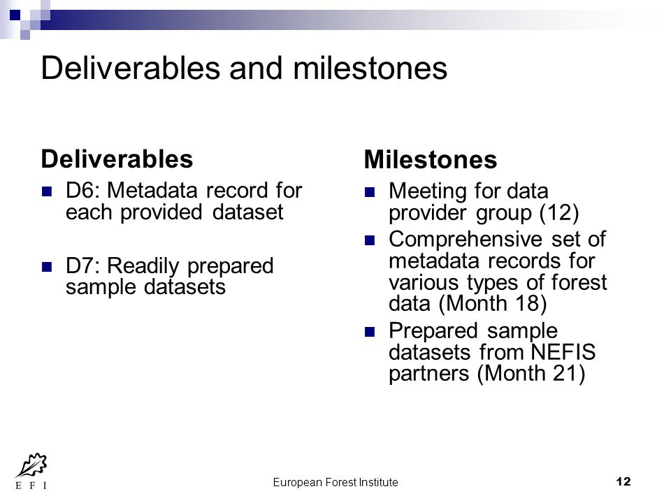 European Forest Institute12 Deliverables and milestones Deliverables D6: Metadata record for each provided dataset D7: Readily prepared sample datasets Milestones Meeting for data provider group (12) Comprehensive set of metadata records for various types of forest data (Month 18) Prepared sample datasets from NEFIS partners (Month 21)