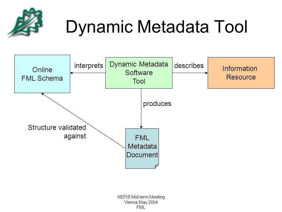 NEFIS Mid-term Meeting Vienna May 2004 FML Dynamic Metadata Tool Online FML Schema Dynamic Metadata Software Tool FML Metadata Document Information Re