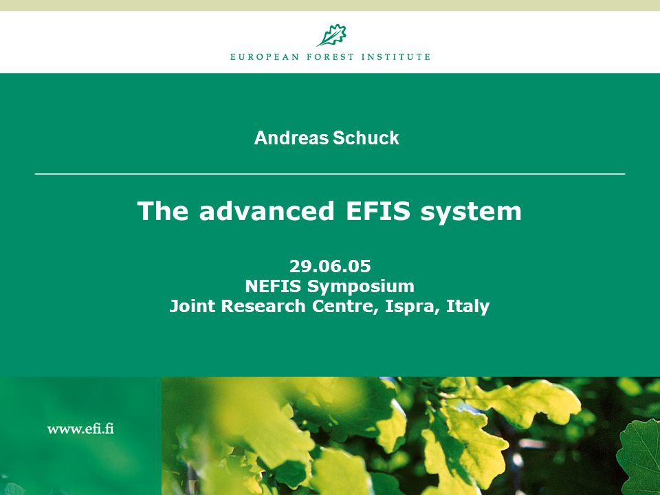 Andreas Schuck The advanced EFIS system 29.06.05 NEFIS Symposium Joint Research Centre, Ispra, Italy