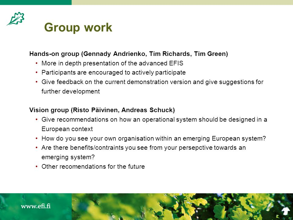 Group work Hands-on group (Gennady Andrienko, Tim Richards, Tim Green) More in depth presentation of the advanced EFIS Participants are encouraged to