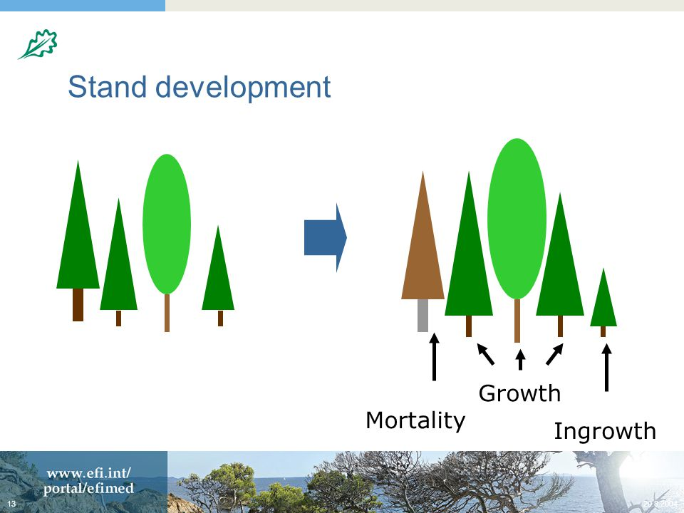 Stand development Growth Mortality Ingrowth