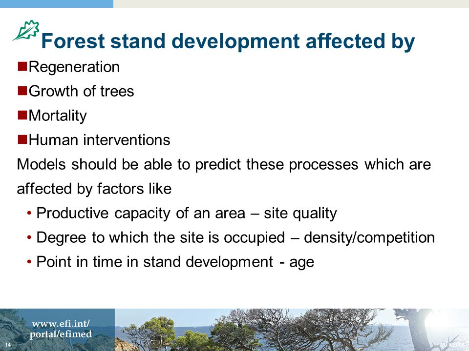 20.8.200414 Forest stand development affected by Regeneration Growth of trees Mortality Human interventions Models should be able to predict these processes which are affected by factors like Productive capacity of an area – site quality Degree to which the site is occupied – density/competition Point in time in stand development - age