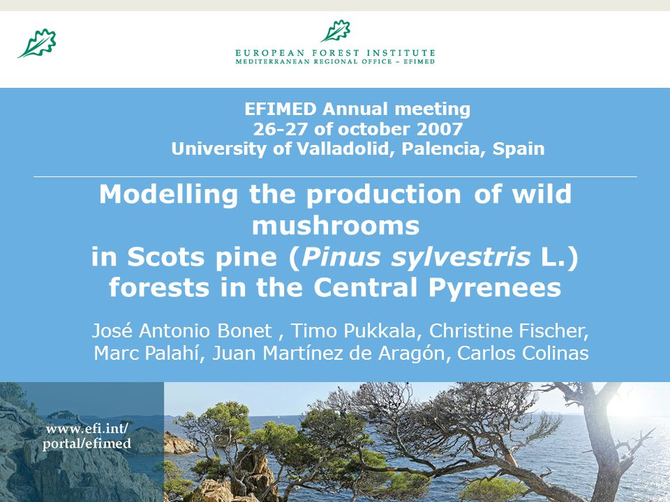 20.8.200423 EFIMED Annual meeting 26-27 of october 2007 University of Valladolid, Palencia, Spain Modelling the production of wild mushrooms in Scots pine (Pinus sylvestris L.) forests in the Central Pyrenees José Antonio Bonet, Timo Pukkala, Christine Fischer, Marc Palahí, Juan Martínez de Aragón, Carlos Colinas