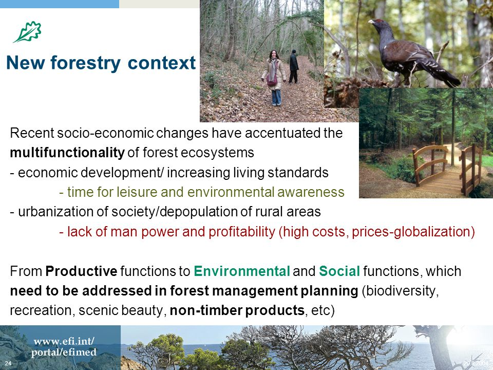 New forestry context Recent socio-economic changes have accentuated the multifunctionality of forest ecosystems - economic development/ increasing living standards - time for leisure and environmental awareness - urbanization of society/depopulation of rural areas - lack of man power and profitability (high costs, prices-globalization) From Productive functions to Environmental and Social functions, which need to be addressed in forest management planning (biodiversity, recreation, scenic beauty, non-timber products, etc)