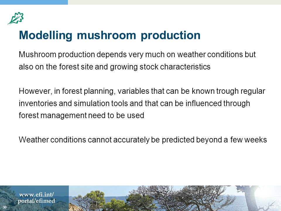 Modelling mushroom production Mushroom production depends very much on weather conditions but also on the forest site and growing stock characteristics However, in forest planning, variables that can be known trough regular inventories and simulation tools and that can be influenced through forest management need to be used Weather conditions cannot accurately be predicted beyond a few weeks