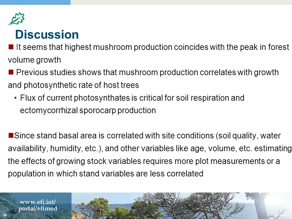 Discussion It seems that highest mushroom production coincides with the peak in forest volume growth Previous studies shows that mushroom production correlates with growth and photosynthetic rate of host trees Flux of current photosynthates is critical for soil respiration and ectomycorrhizal sporocarp production Since stand basal area is correlated with site conditions (soil quality, water availability, humidity, etc.), and other variables like age, volume, etc.