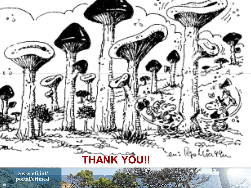 20.8.200440 Dibujo transición corta setas THANK YOU!!