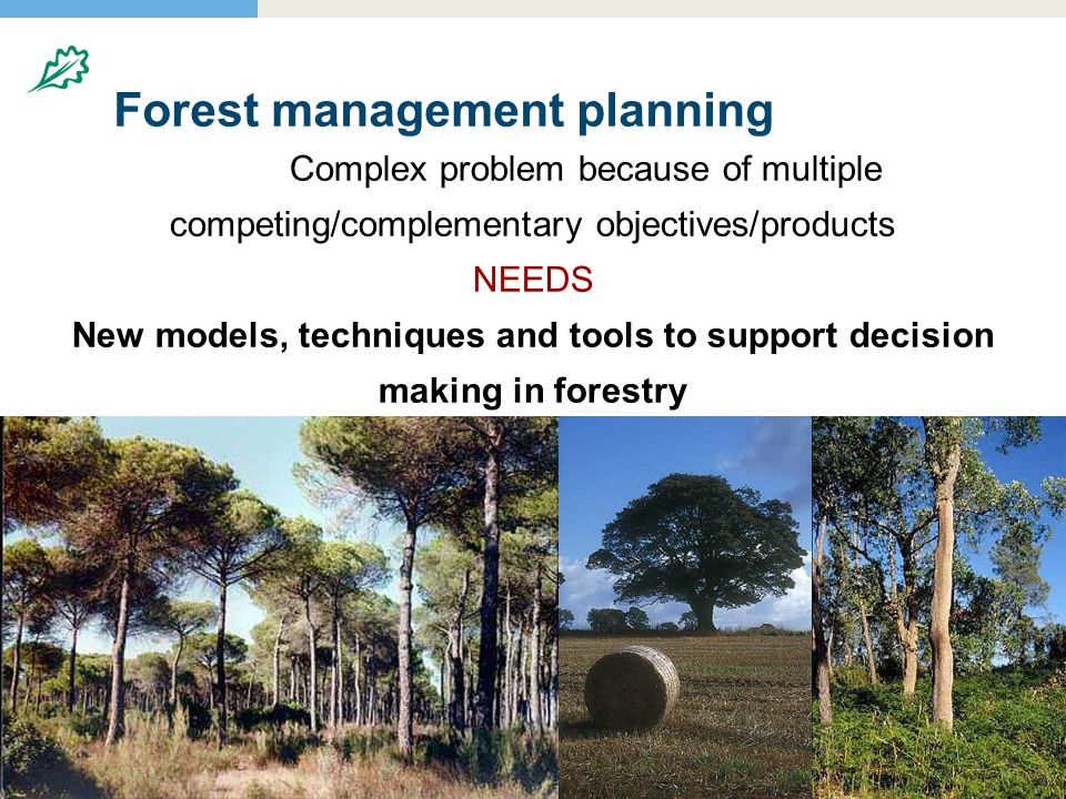 Forest management planning Complex problem because of multiple competing/complementary objectives/products NEEDS New models, techniques and tools to support decision making in forestry