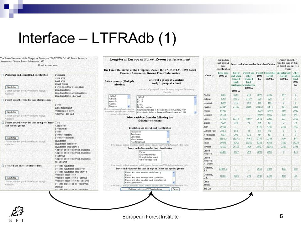 European Forest Institute6 Interface Forest Products Trade Flow db