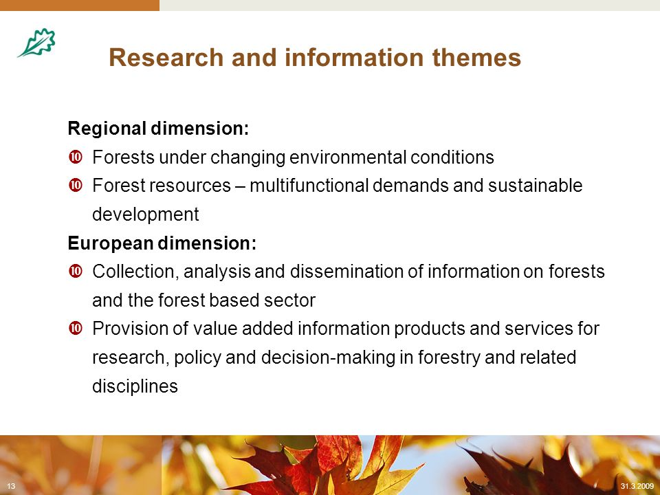 Research and information themes Regional dimension:  Forests under changing environmental conditions  Forest resources – multifunctional demands and sustainable development European dimension:  Collection, analysis and dissemination of information on forests and the forest based sector  Provision of value added information products and services for research, policy and decision-making in forestry and related disciplines 31.3.200913