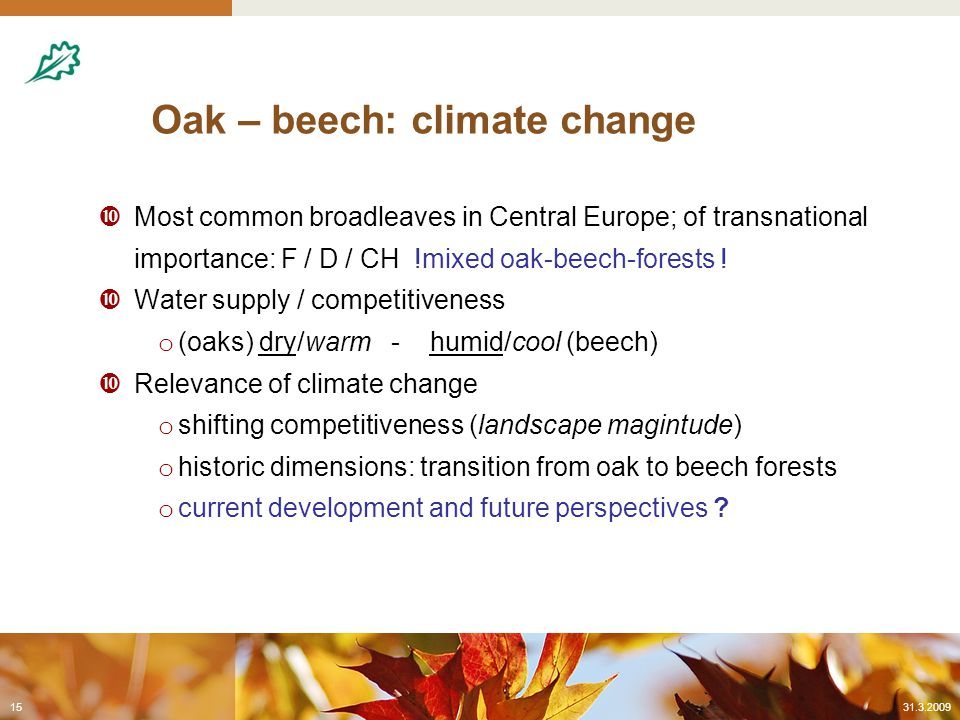 Oak – beech: climate change  Most common broadleaves in Central Europe; of transnational importance: F / D / CH !mixed oak-beech-forests .