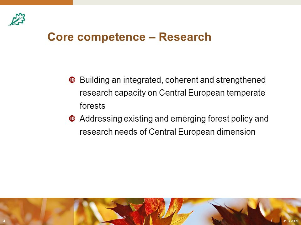 Core competence – Information  Strengthen EFI in its core aim of providing value-added, science-based information & services on European forests and forestry to a wide range of target groups  Complementarity & support to existing initiatives in information provision and analysis at European level o contribution to filling existing data and information gaps in the European forest sector  This work shall be addressed by a 'European Forest Observatory' constituting an integral part of EFICENT 31.3.20095